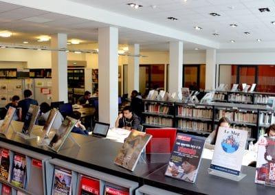 cdi bibliothèque